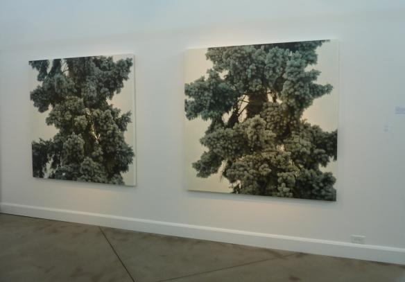 Melissa Doherty: Oil on Canvas