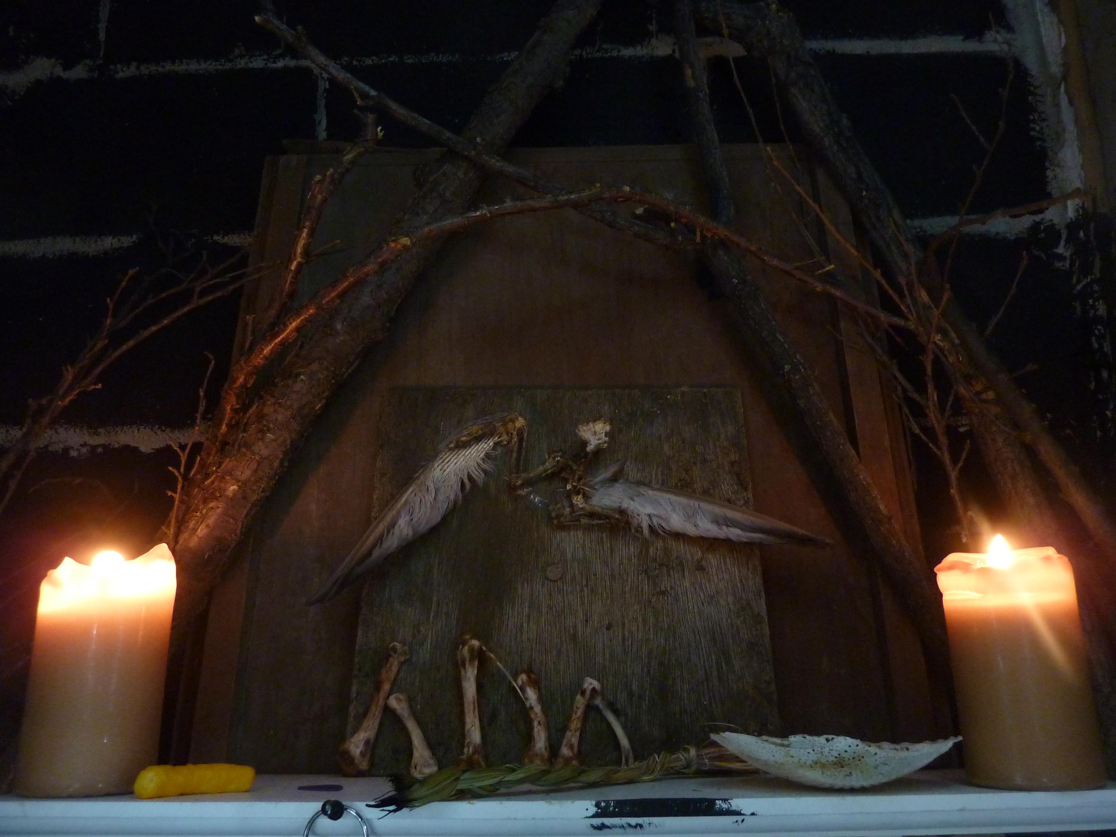 Winged Apocalypse (Jack Bride, Chris Zajko, and Jayda Karsten)