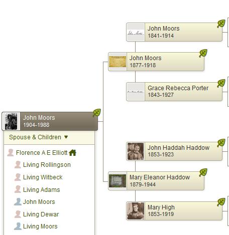 Tree John Moors