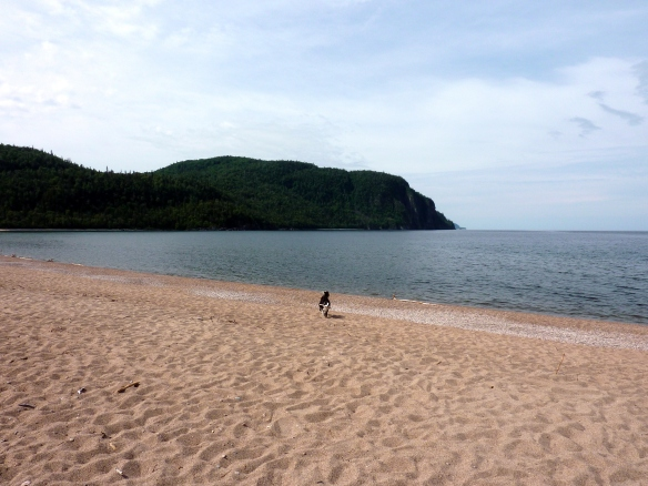 Max enjoying a run at Old Woman's Bay on Lake Superior