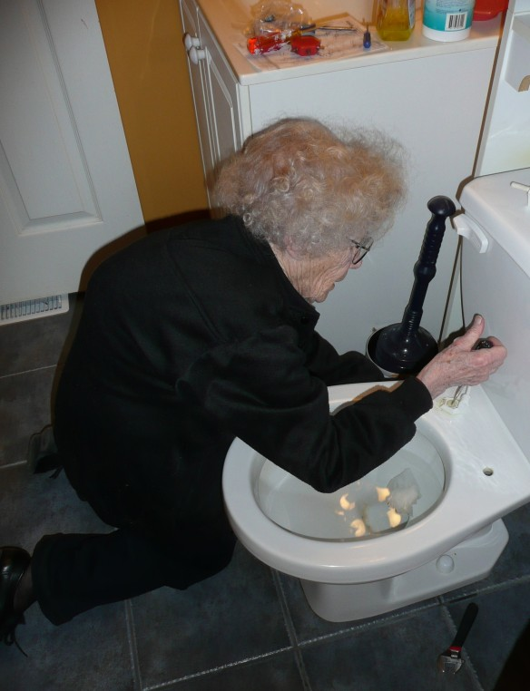 Elma Repairing my toilet seat.