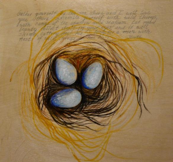 Three Eggs and Nest