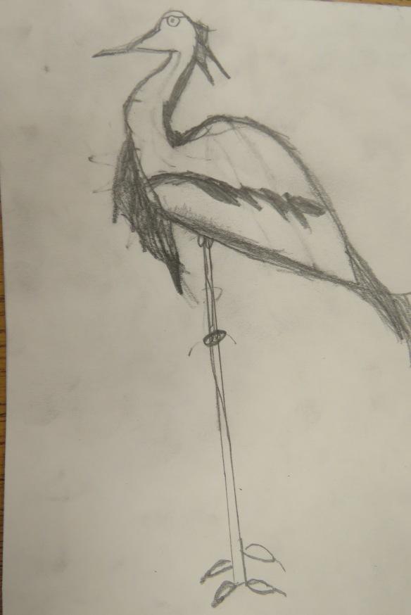 Kath's Canon, September 23, 2015 Heron Art Grade 4 Poundmaker 002