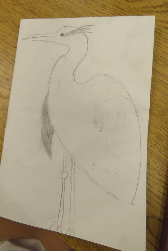 Kath's Canon, September 23, 2015 Heron Art Grade 4 Poundmaker 024