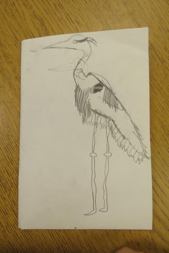 Kath's Canon, September 23, 2015 Heron Art Grade 4 Poundmaker 025