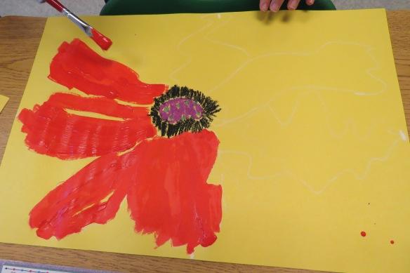 Kath's Canon, November 11, 2015 Grade 3 Poppies, Burnsland, Bush 038