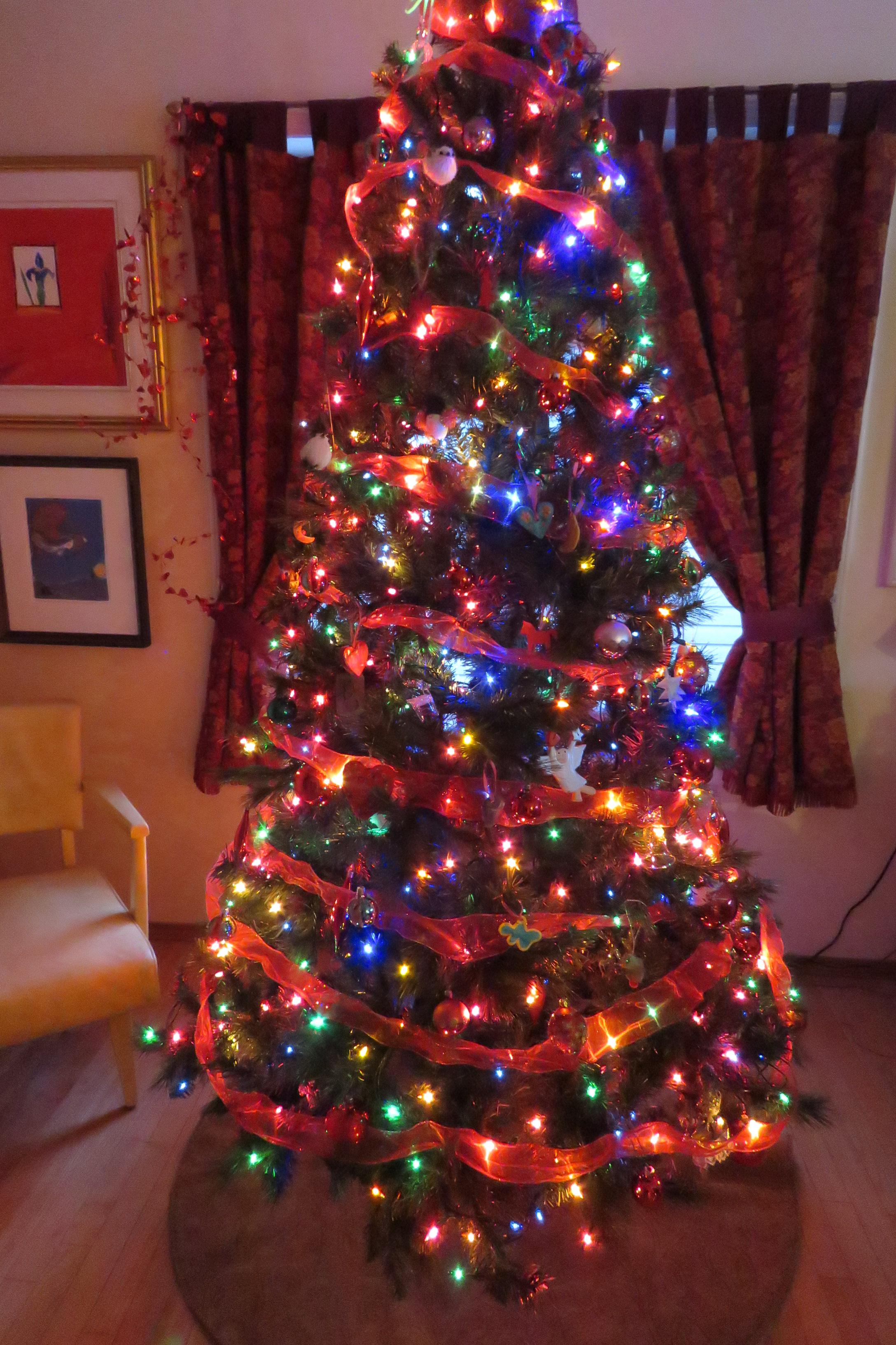 Kath's Canon, December 15, 2015 Christmas Tree Bush Eli's Painti 002