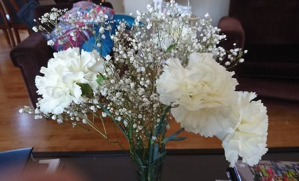 White Carnations August 11, 2017