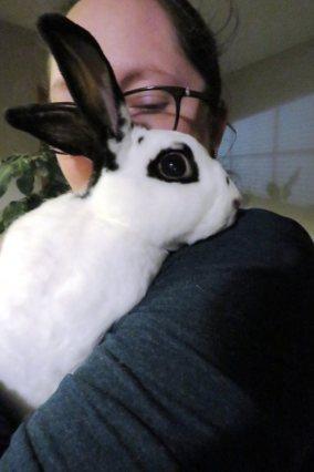 Angela Bunny 1