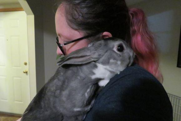 Angela Bunny 2